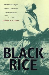 Black Rice cover